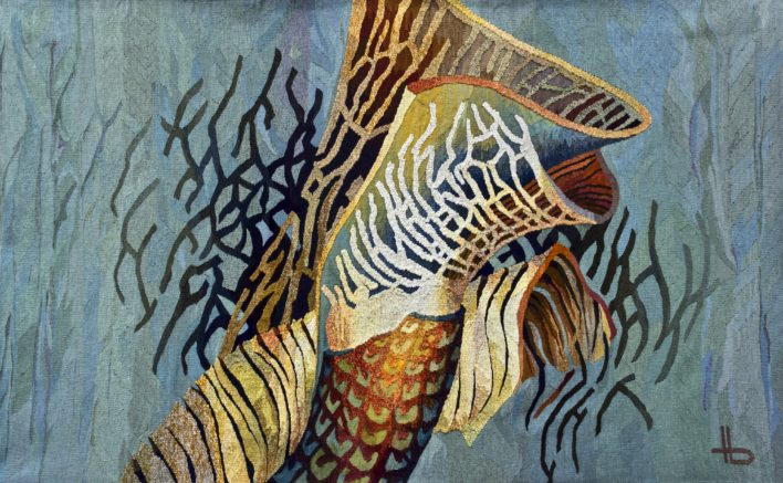 cochilii-150x260cm-tapiserie-haute-lisse