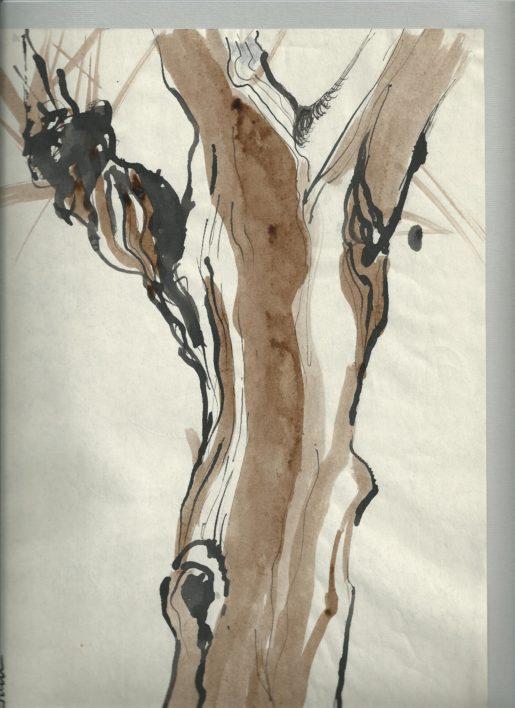 p-copac2-tusuri-aquarela-40cmx-34cm-1991