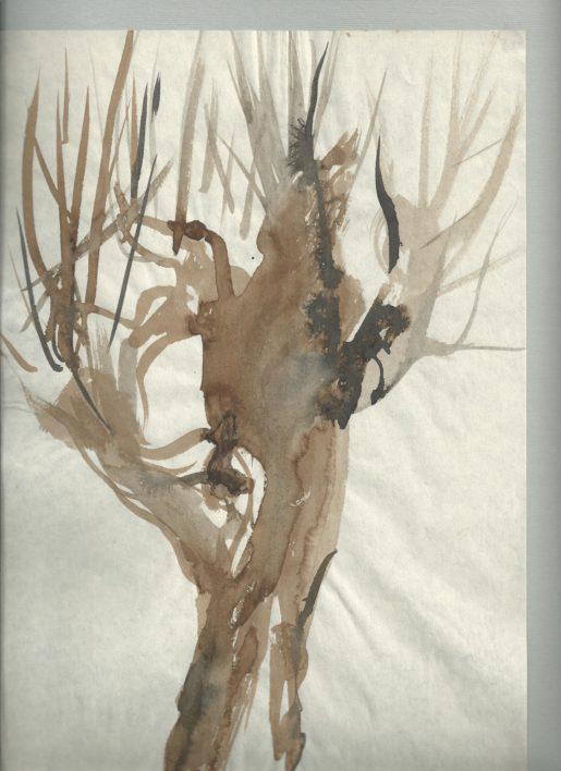p-copac4-culori-de-apa-40cmx-34cm-1991